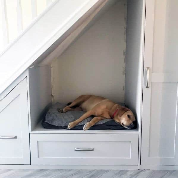 Designs For Under Stairs Dog Bed With Cabinets