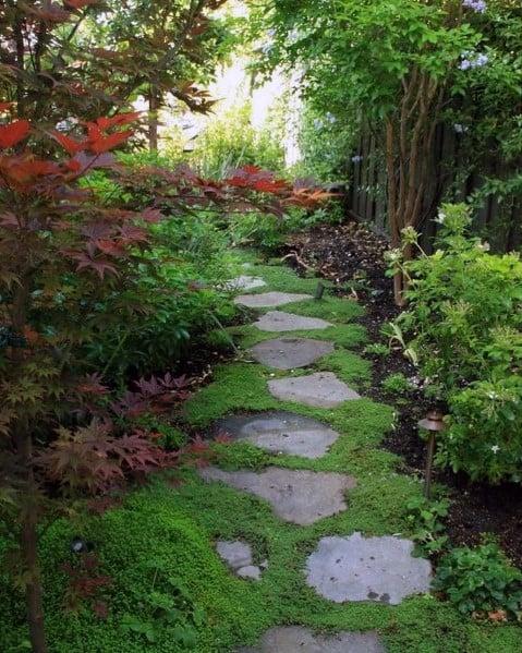 Designs Stone Walkway With Grass Backyard