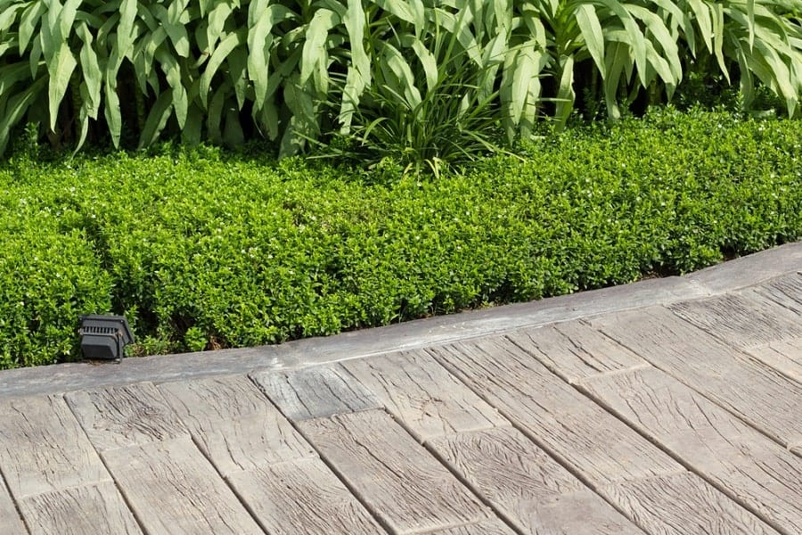 Designs Wooden Walkway Deck For Backyard