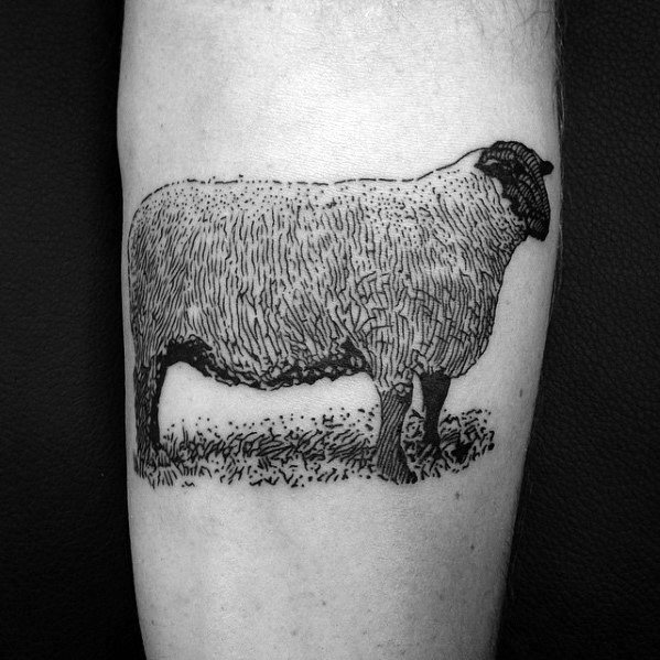 Detailed Awesome Black Ink Forearm Sheep Tattoos For Men