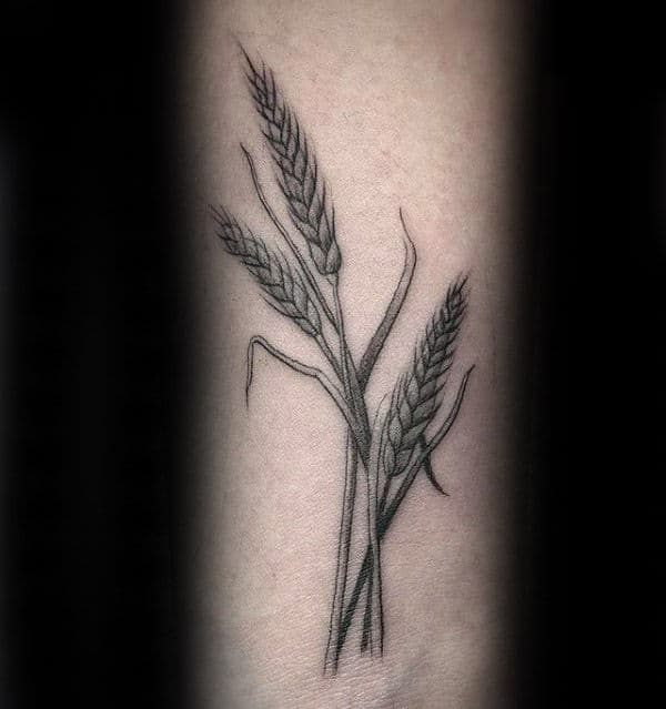 Detailed Guys Virgo Wheat Forearm Tattoo