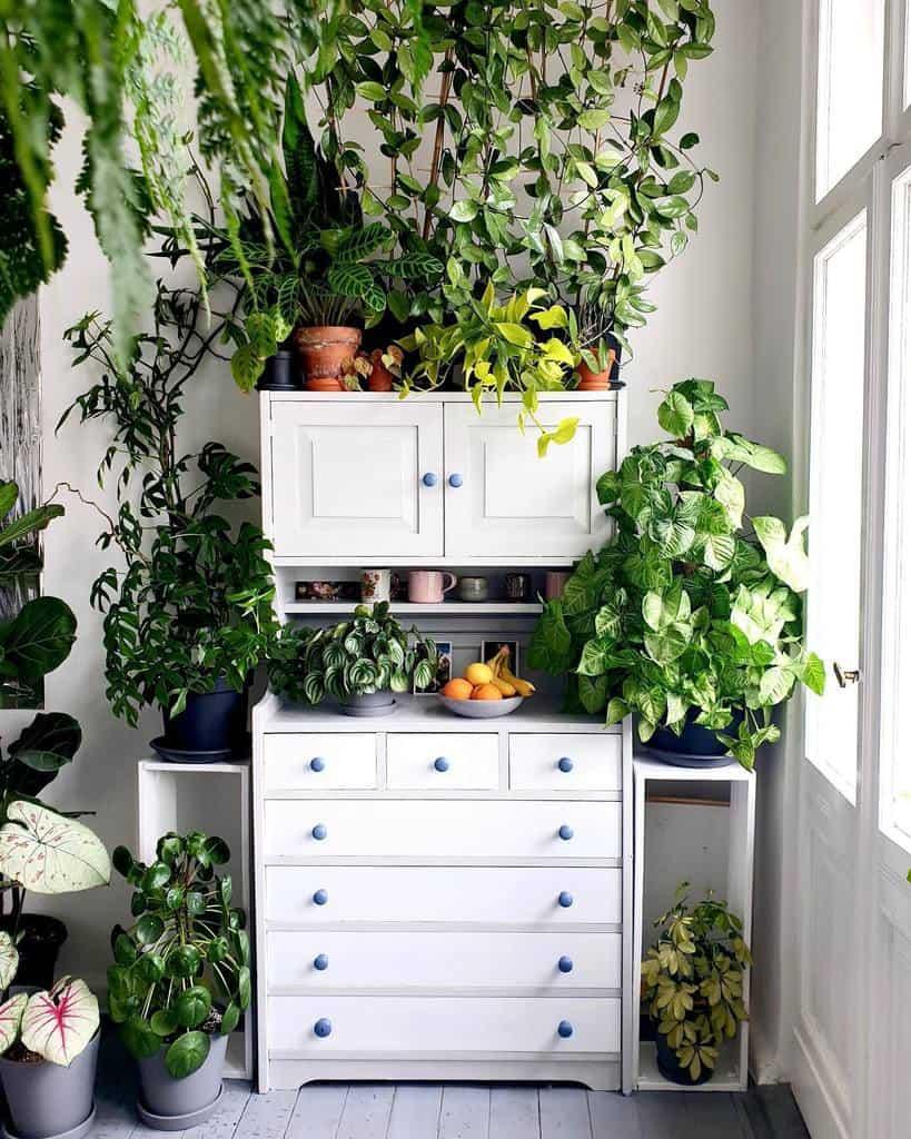 dining room and kitchen indoor garden ideas eliotparke