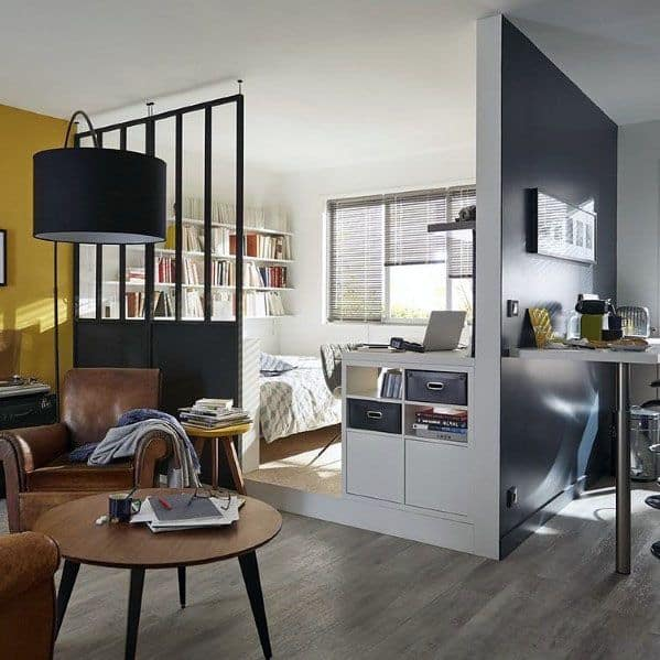 Divider Ideas For Studio Apartments