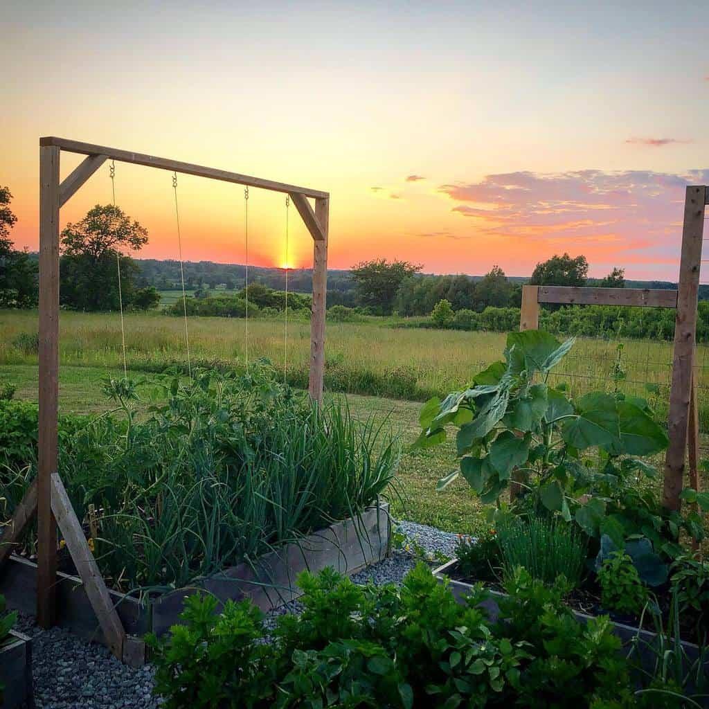 diy garden trellis ideas downbythelottie