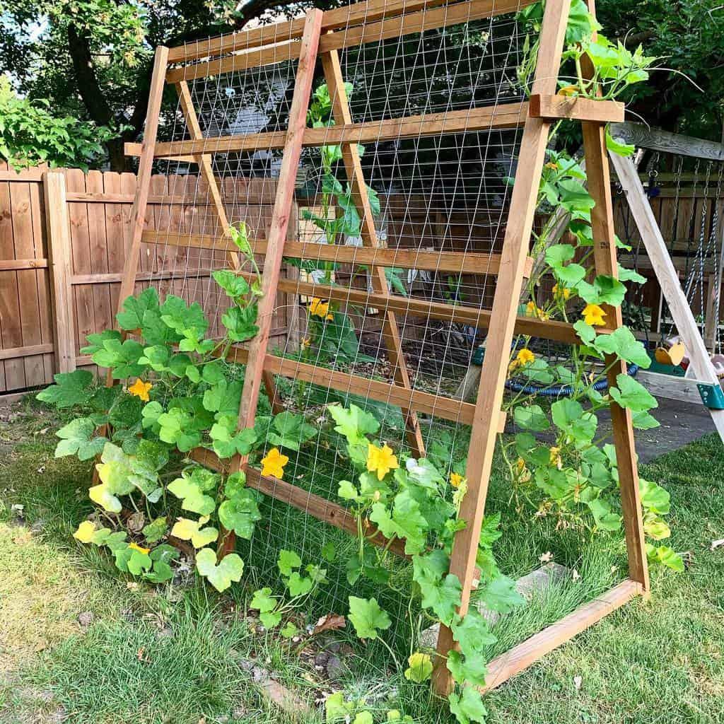diy garden trellis ideas lexiceaglske