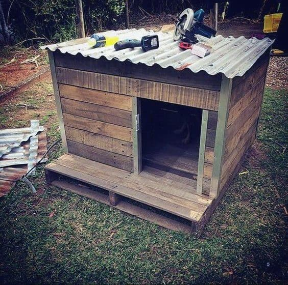 Dog House Cold Weather Ideas