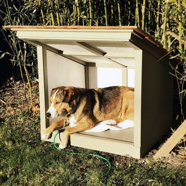 Dog House Designs For Small Dogs