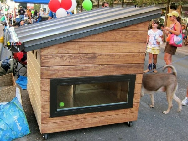 Dog House Designs With Real Window