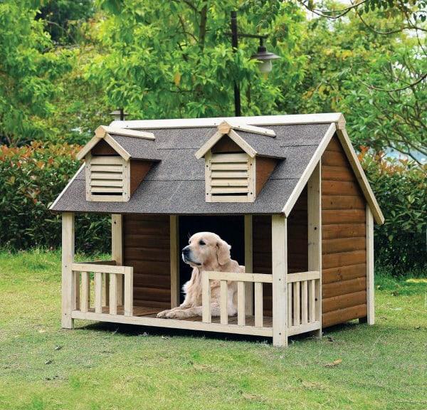 Dog House Mansion Ideas
