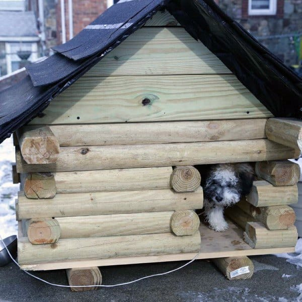 Dog House Roof Designs