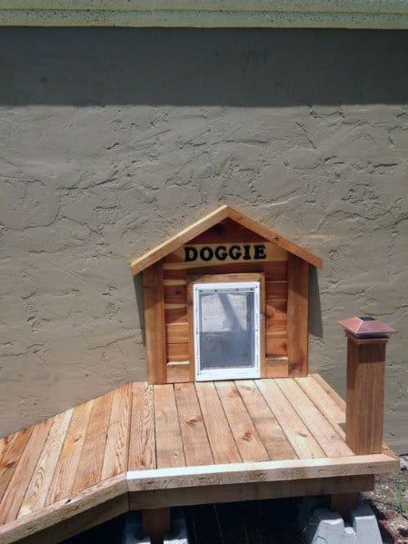 Dog House Themed Design Ideas For Doggy Door With Wood Ramp