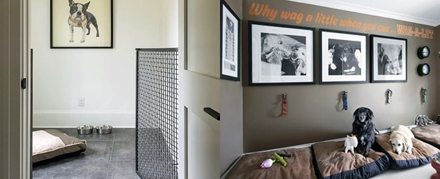 Gentil Dog Room Ideas