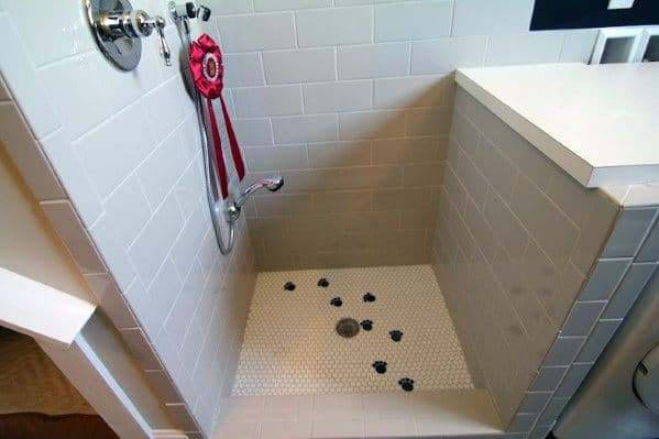 Dog Shower For Mudroom Ideas With Paw Print Tile Floor