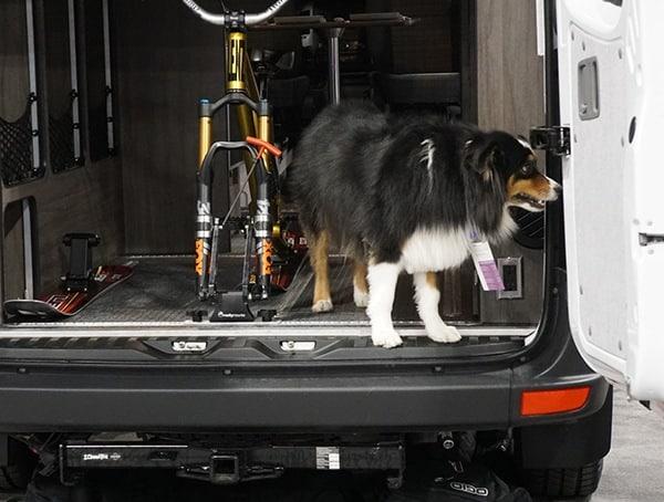 Dog With Bike Van Outdoor Retailer Winter Market 2018