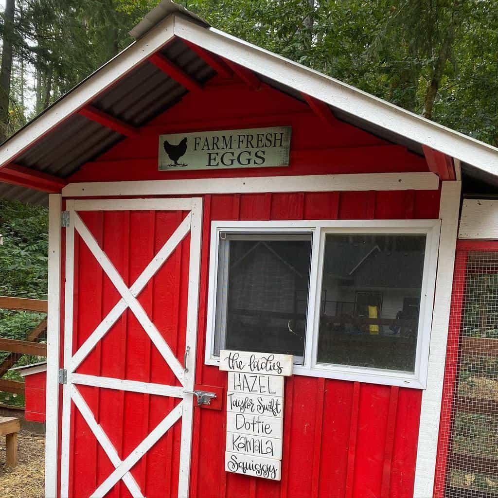 door chicken coop ideas ravenwoodsfarm
