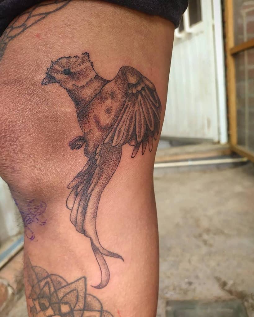 Dotwork Quetzal Tattoos Dexterpts