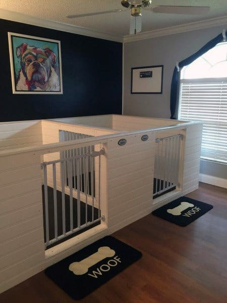 Top 60 Best Dog Room Ideas - Canine Space Designs