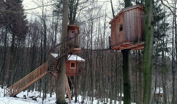 Double Treehouse Ideas