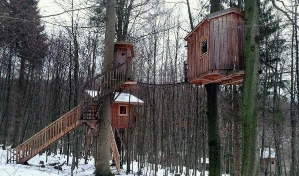 Double Treehouse Ideas