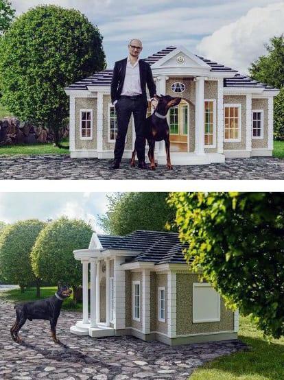Doug House Large Designs