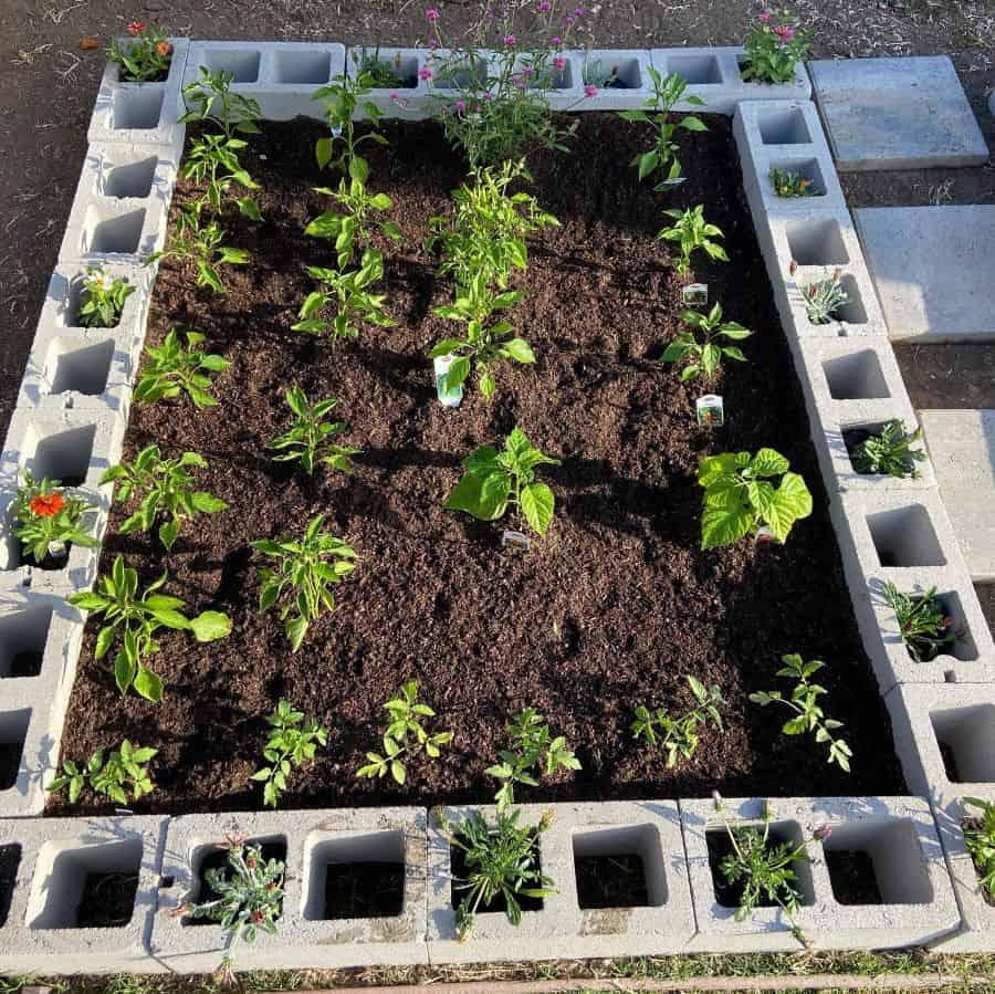 easy raised garden bed ideas joanne_botanical4life