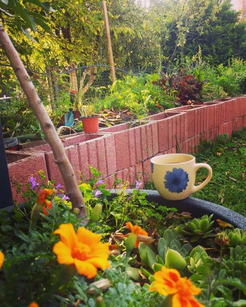 easy raised garden bed ideas sajraarjas