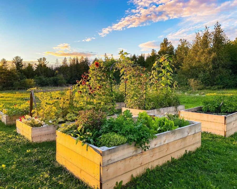 easy raised garden bed ideas saltboxacres