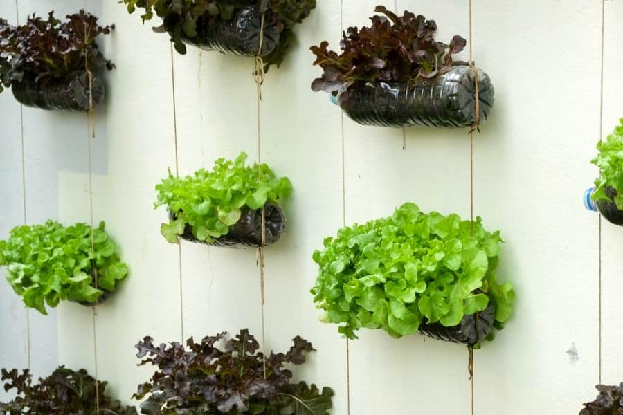 easy vertical garden ideas 2