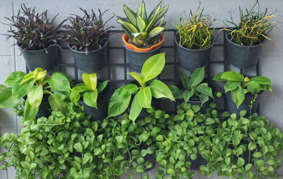 easy vertical garden ideas 4