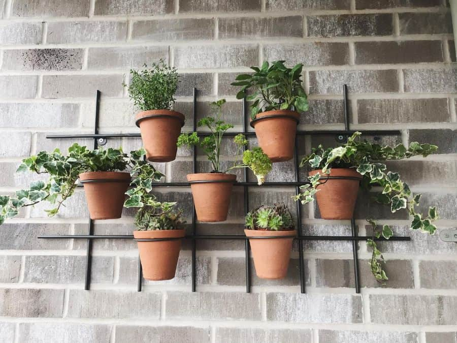 easy vertical garden ideas pantry_jess