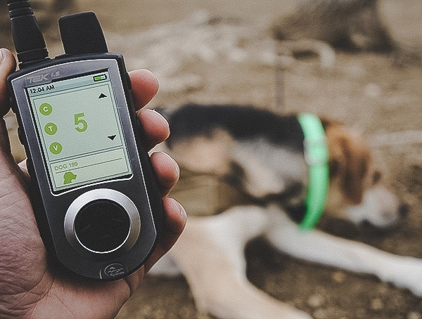 Electronic Dog Collar Training Sportdog Brand Tek 1 5 Gps Tracking