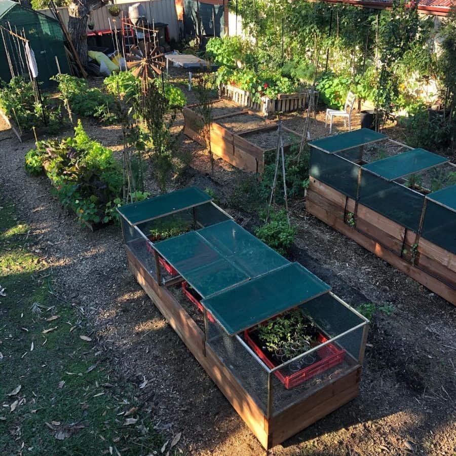enclosed raised garden raised garden bed ideas energygardensbrisbane