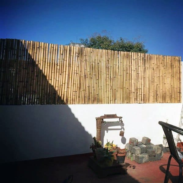 Excellent Backyard Ideas Bamboo Fence