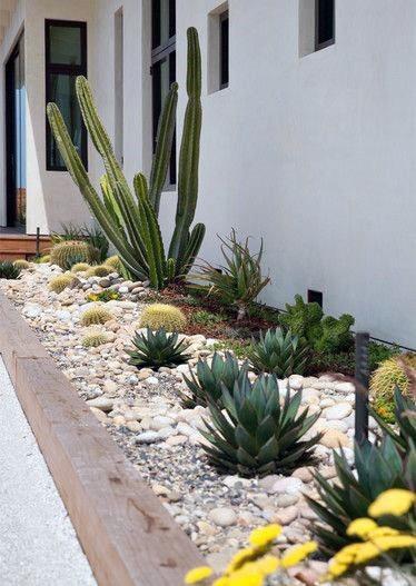 Excellent Exterior Ideas Desert Landscaping