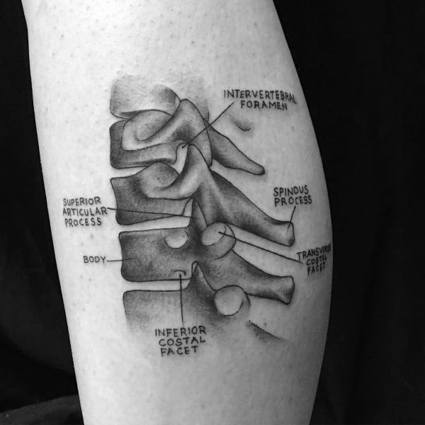 Excellent Guys Anatomical Tattoos