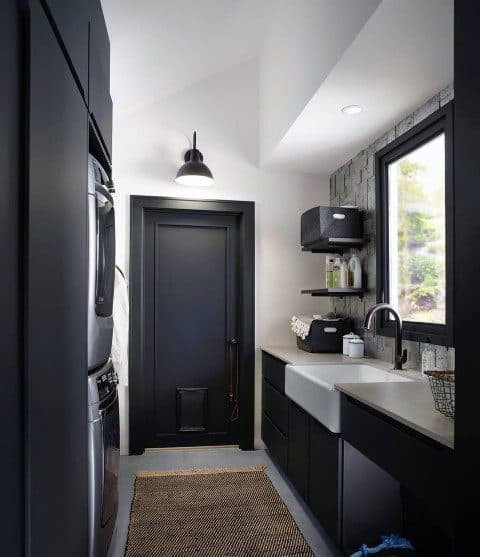 Exceptional Doggy Door Ideas Painted Black Mud Room