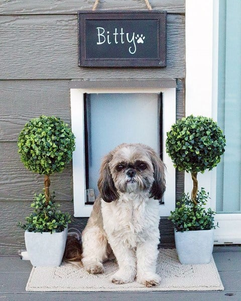 Exterior Planters With Sign Doggy Door Ideas Inspiration