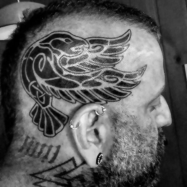 Falcon Tribal Mens Celtic Head Tattoos