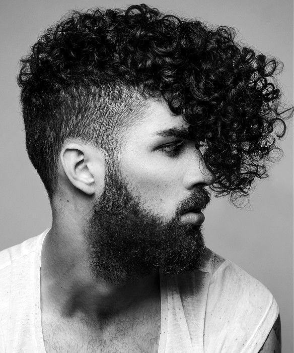 Fashionable Curly Fade Haircut For Males Long Length
