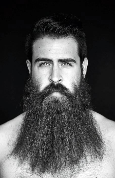 Fashionable Male Beard Big Styles