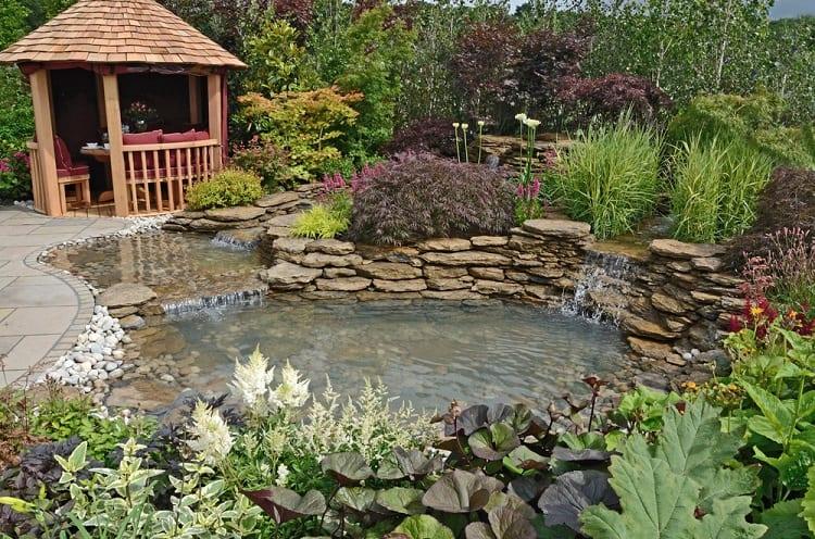 Feflections Aquatic Garden Backyard Waterfall