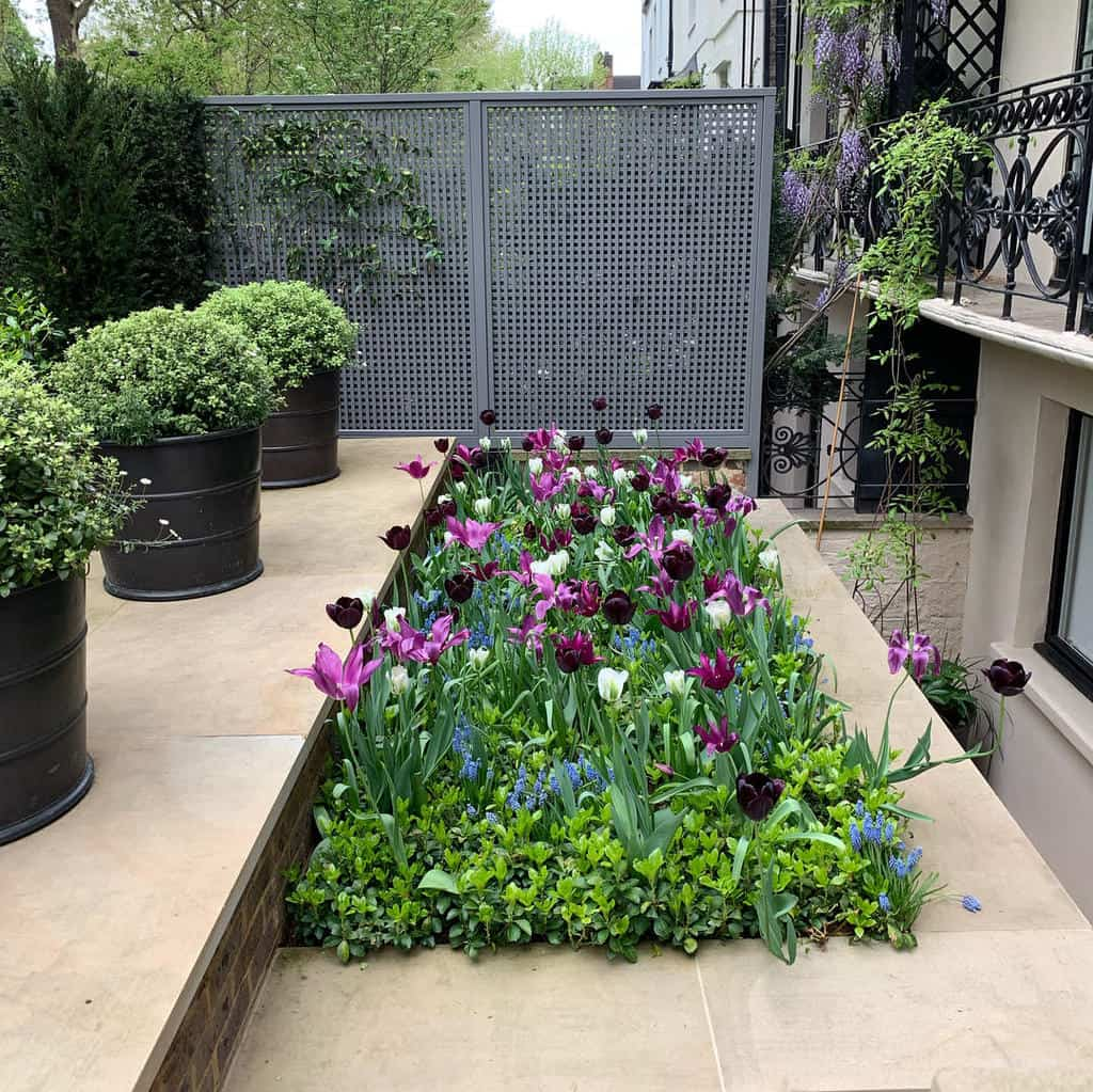 fence garden trellis ideas butterwakefield