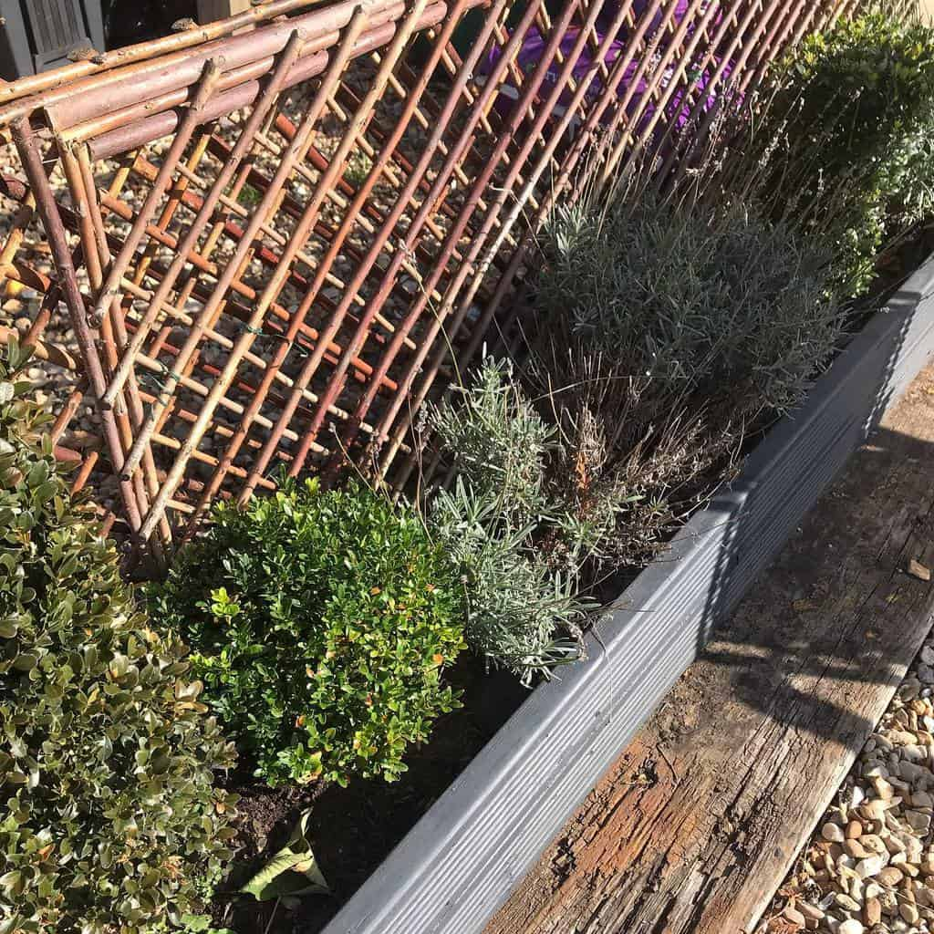 fence garden trellis ideas hedgeoverheels