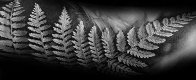 60 Fern Tattoo Designs For Men – Leaf Ink Ideas