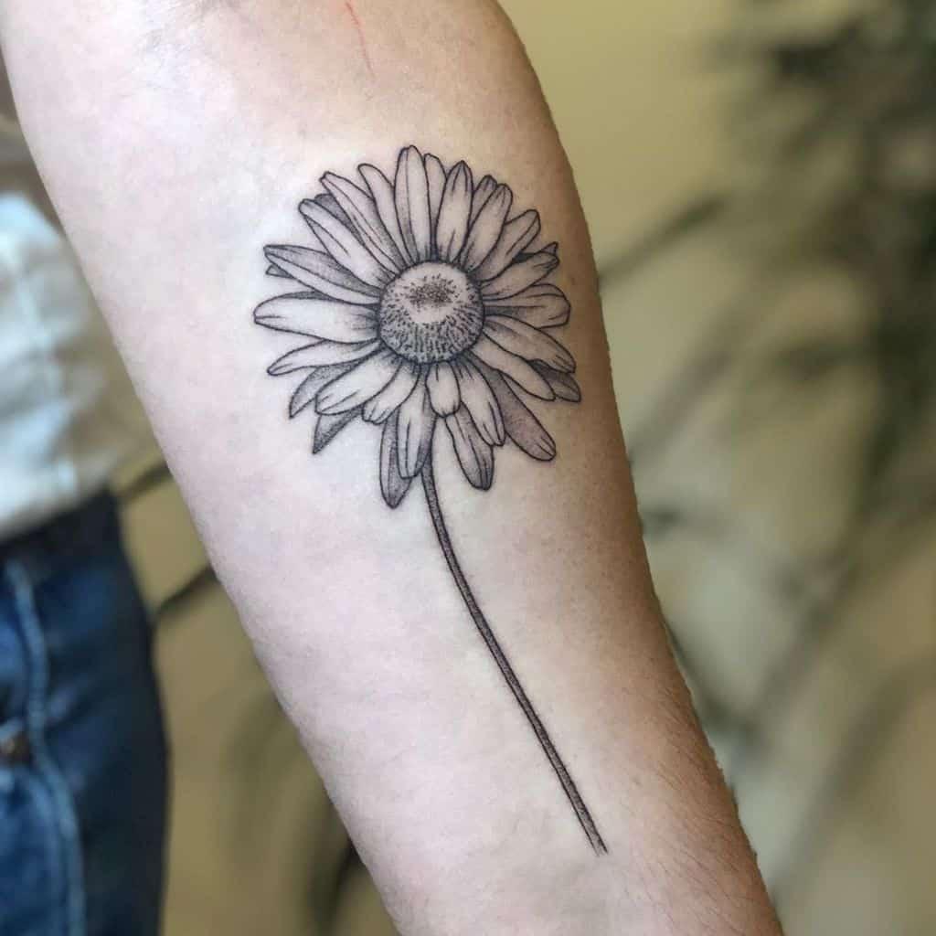 Forearm tattoo black and grey fine line daisy