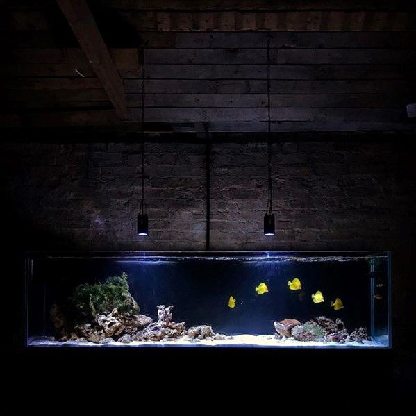 Fish Tank Bachelor Pad Decor