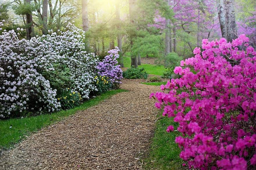 flower path flower garden ideas 1