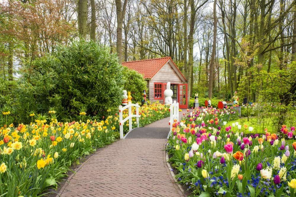 flower path flower garden ideas 2