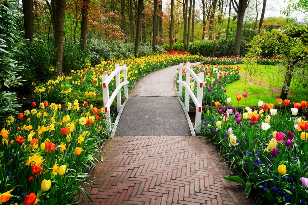 flower path flower garden ideas 5