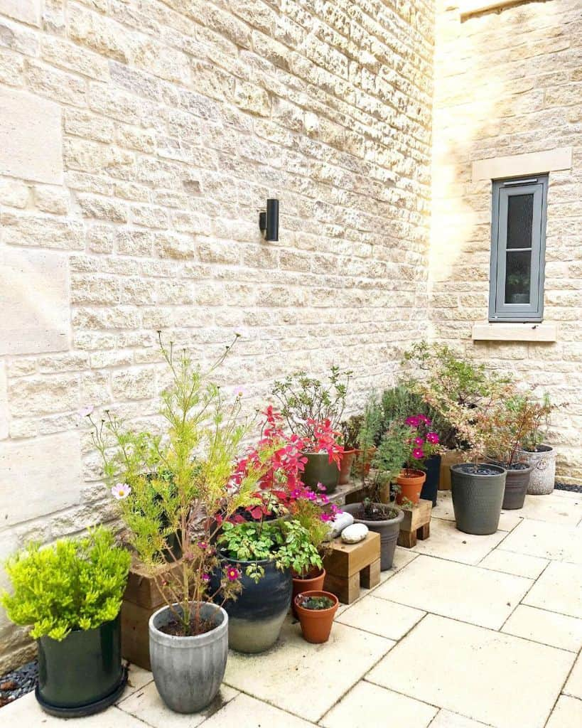 flowering and ornamental plants container garden ideas kin22lee